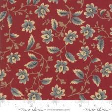 Betsy Chutchian ' Nancy's Needle' rood blauwe bloem